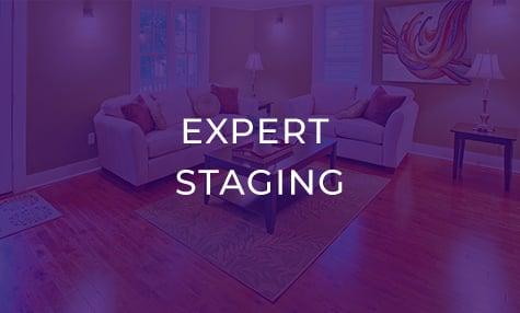 ExpertStagingBg-PurpleOverlay-LivingRoom_03
